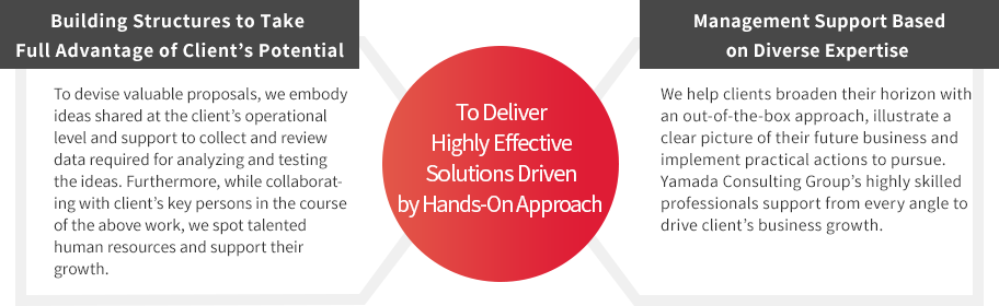 Highly Effective Solutions Driven by Hands-On Approach image